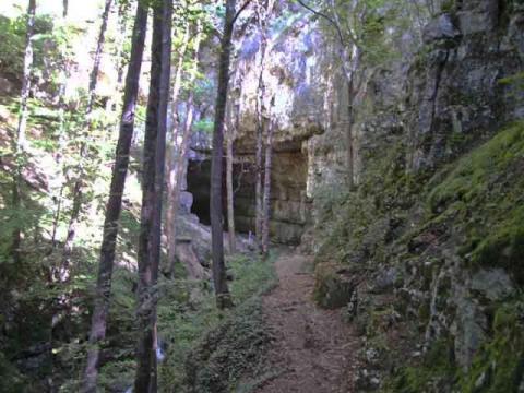 Falkensteiner Höhle Tour